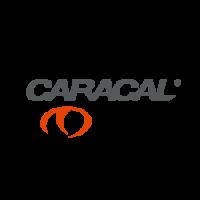 caracal (Demo)